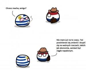 Holandia już dojrzała