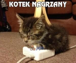 Kotek nagrzany