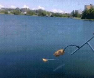 Skakanie po wodzie