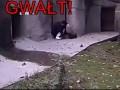 Atak miszcza kung-fu