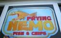 Ciekawe gdzie jest Nemo...