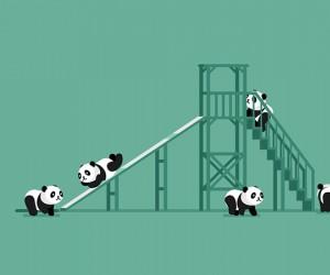 Wszyscy uwielbiają pandy