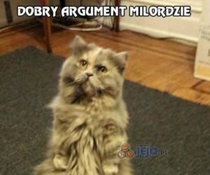 Nie tak łatwo dojść z kotem do porozumienia