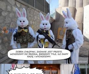 Największa zmora królików