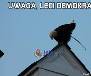 Uwaga, leci demokracja!