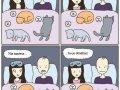 Spanie z kotami