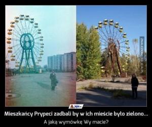 Mieszkańcy Prypeci zadbali by w ich mieście było zielono...
