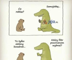 Samojebka krokodyla