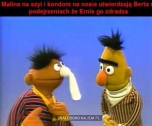 Podejrzliwy Bert