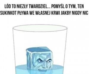 Twardy ten lód
