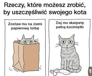 Jak uszczęśliwić kota