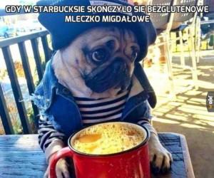 Gdy w Starbucksie skończyło się bezglutenowe mleczko migdałowe