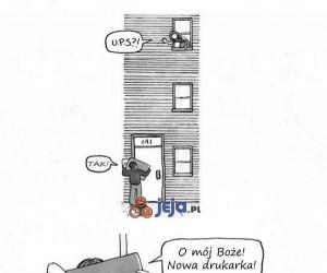 Prezent dla człowieka i dla kota