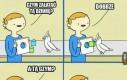 Mądra ptaszyna