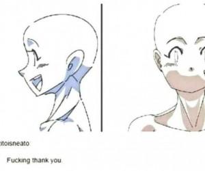 Anatomia anime
