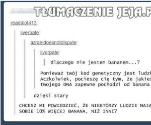 DNA banana
