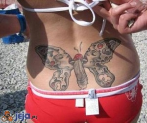 """Motyl"""