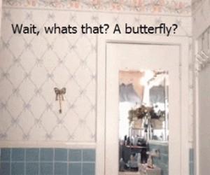 Co to? Czyżby to był motyl?