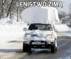 Lenistwo zimą