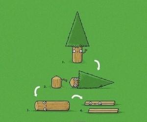 Reinkarnacja drzewka