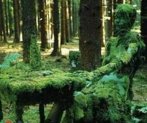 Wybryk natury