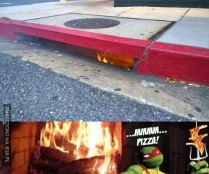 Żółwie, ogarnijcie się, bo przypalicie chodnik