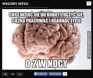 Myślenie o głupotach