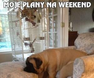 Moje plany na weekend