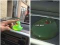 Nie zostawiajcie zwierząt w samochodzie podczas upałów!!!