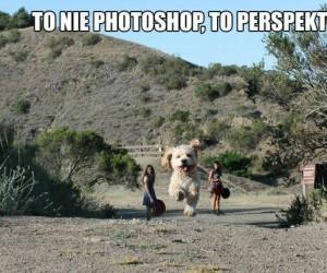Perspektywa - naturalny Photoshop