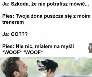 Psie przejęzyczenie