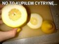 No to kupiłem cytrynę...