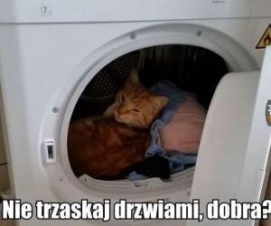 Nie trzaskaj drzwiami, dobra?
