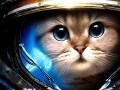 Starcraftowy kotek