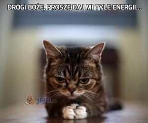 Drogi Boże, proszę daj mi tyle energii...