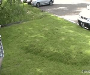 Ruchomy trawnik