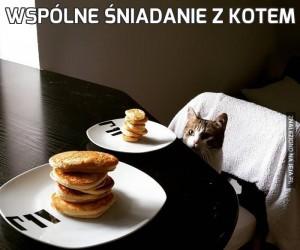 Wspólne śniadanie z kotem