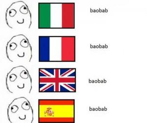 Niemiecki baobab