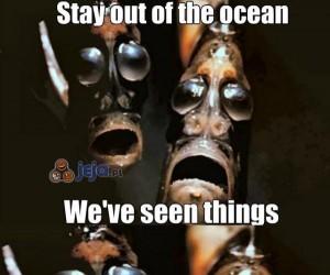 Widzieliśmy straszne rzeczy