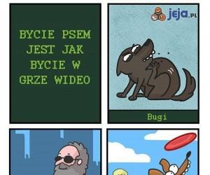 Bycie psem jak gra wideo