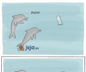 Podwodne strachy...
