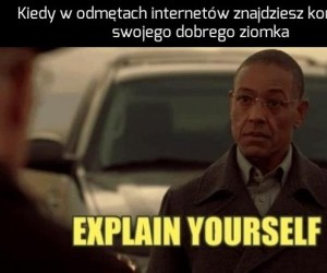 Tłumacz się natychmiast