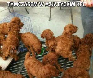 Tymczasem w azjatyckim KFC