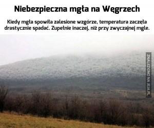 Węgierska mgła