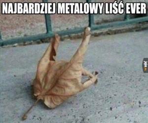 Metalowy liść