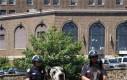Nowe policyjne wierzchowce