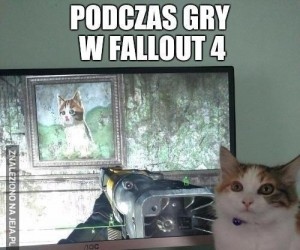 Podczas gry w Fallout...
