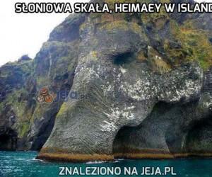 Słoniowa skała, Heimaey w Islandii