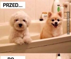 Kąpiel wszystko zmienia