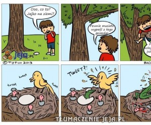 Jajko pod drzewem